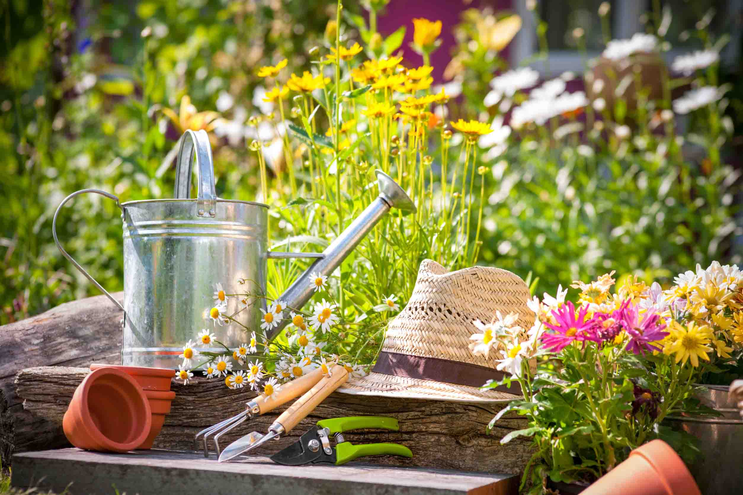 Préparation des outils de jardinage