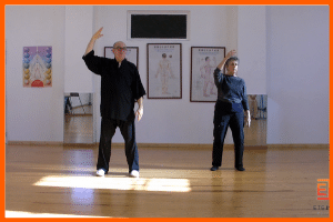 exercices de Qi Gong en video