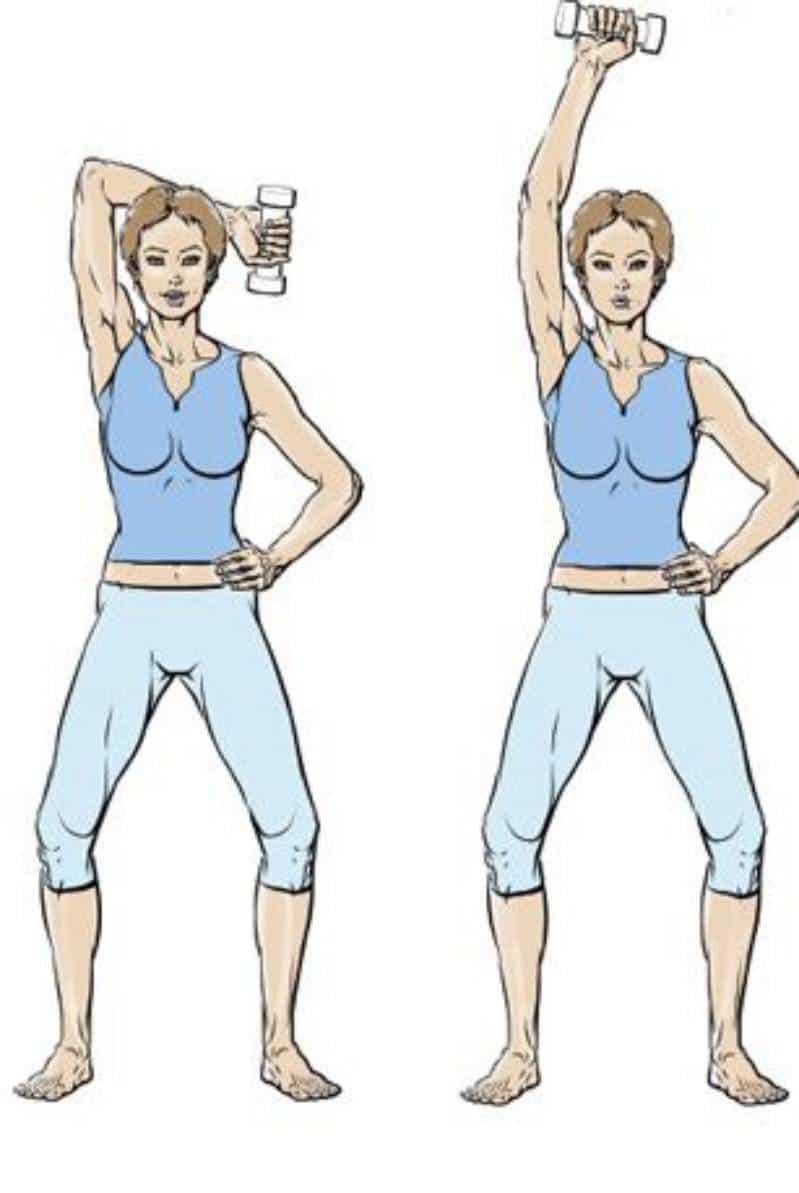 exercice de musculation des tricpes après 50 ans avec haltères