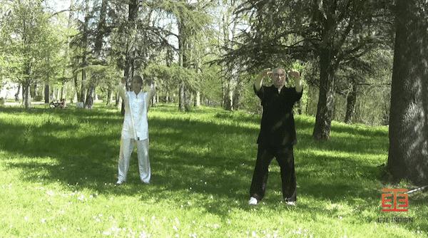 séance de Qi Gong en vidéo pour les seniors