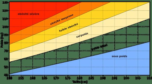 indice de masse corporelle chez les seniors